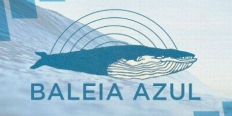A História do Programa Baleia Azul