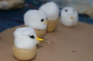 Modelo de albatrozes no ninho confeccionados em oficina