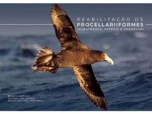 Foto Biblioteca_Livro Procellariiformes