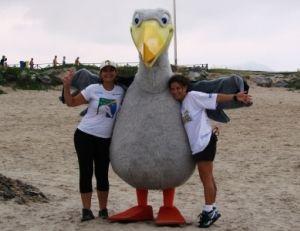 Wisdom, albatroz fêmea, mascote da Volvo Ocean Race