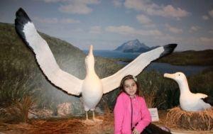 Raphaela Gianuca Vaz, visitando a exposição
