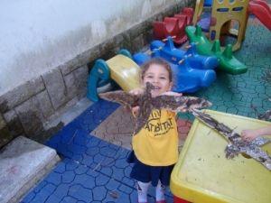 Atividade de Educação Ambiental: O sobrevôo do albatroz