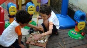 Atividade de Educação Ambiental: Ninhal de Albatroz