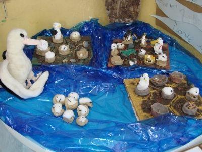 Ninhal de Albatroz produzido pelos alunos