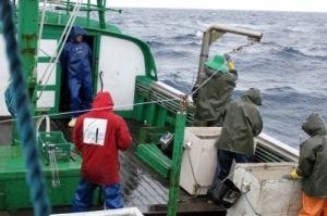Recolhimento de linha, Barco Maria