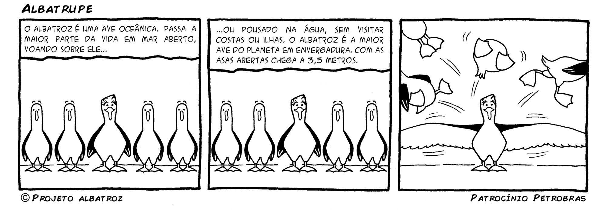 Tirinha-1-Português-Albatroz