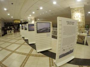 Foto Notícias_Exposição no Mar 2