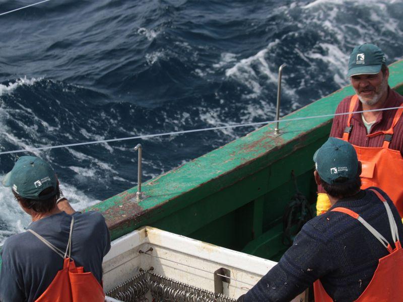 Foto Noticia_dias de testes em alto-mar