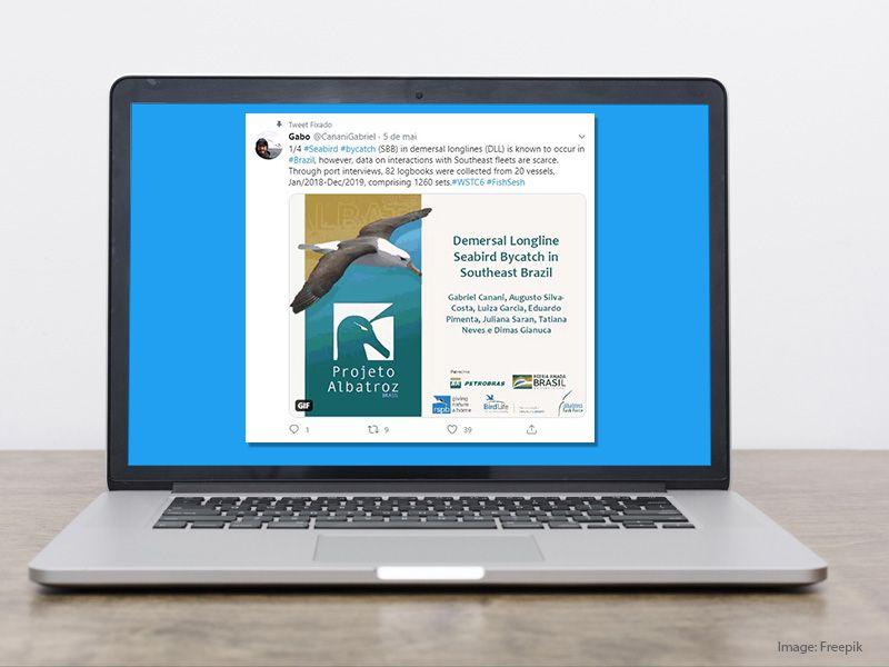 6º Conferência Mundial de Aves Marinhas no Twitter conta com a participação do Projeto Albatroz