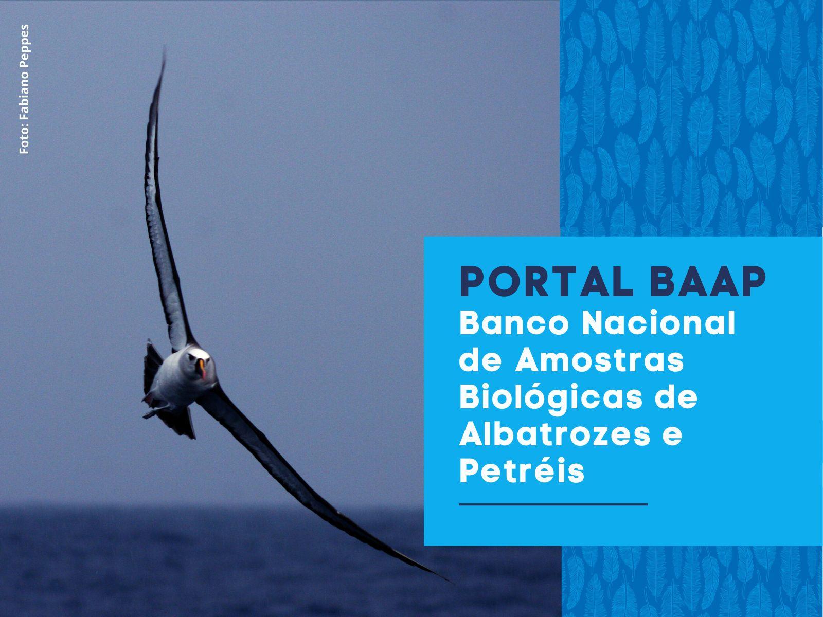 Cópia de PORTAL BAAP Banco Nacional de Amostras Biológicas de Albatrozes e Petréis (2)